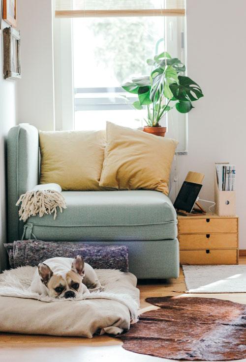 Cómo alquilar rápido mi casa con ayuda del Home Staging